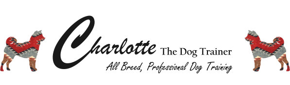 Charlotte the Dog Trainer – Doggy Digest